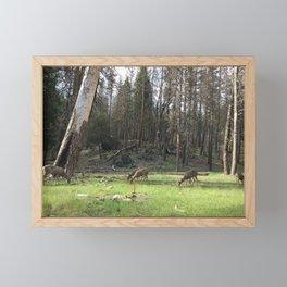 Deer Grazing Peacefully in a Green Woodland Glade Framed Mini Art Print