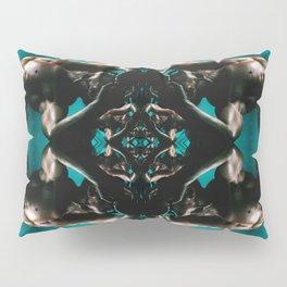 Night Swimming (Synchronized) Pillow Sham