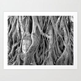 The Lost Buddha  Art Print