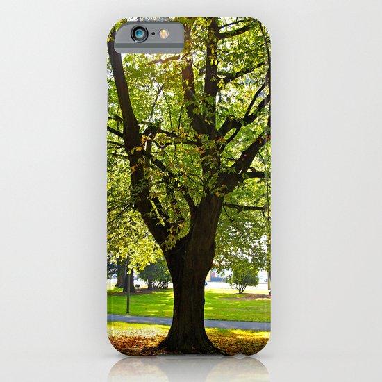 Autumn sun shines iPhone & iPod Case