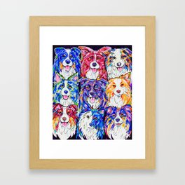 Collies in Colour Framed Art Print