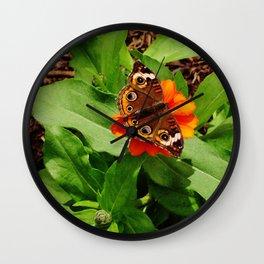 Brown Butterfly w Spots Wall Clock