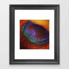 I Spy with a Peacock Eye Framed Art Print