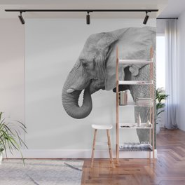 Majestic Elephant Wall Mural