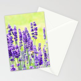 Lavender Flowers Pattern Stationery Cards