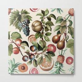 Fruitful Florals, Vintage Prints Food Metal Print