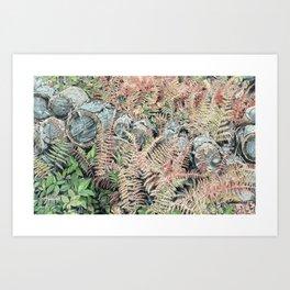 Colored ferns. Art Print