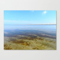 cape cod Canvas Prints featuring Cape Cod by LindsayAlannah