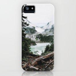 Into the Wild VI / Washington iPhone Case