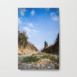To the lake. Metal Print