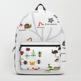 Evolution in biology, scheme evolution of animals on white. children's education back to scool Backpack