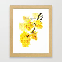 yellow trumpet trees watercolor yellow roble flowers yellow Tabebuia Framed Art Print