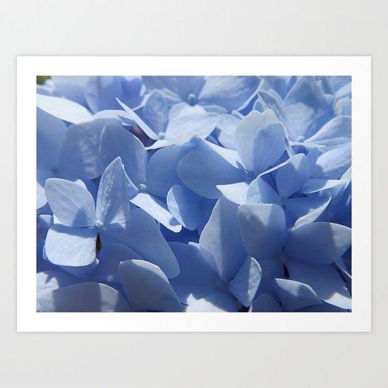 Blue hydrangea in LOVE- Flower floral Art Print
