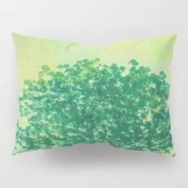 Green Lone Tree, Summer Sunlight Pillow Sham