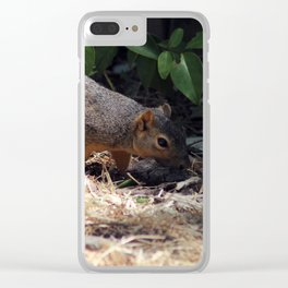 Sniff Clear iPhone Case