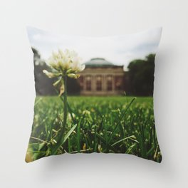Summer Sunshine Throw Pillow