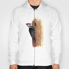 Pileated Woodpecker Hoody