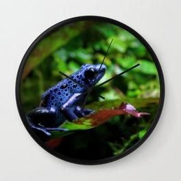 Blue Poison Dart Frog Wall Clock