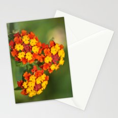 Italian Bloom Stationery Cards