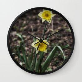Spring Daffodil Wall Clock