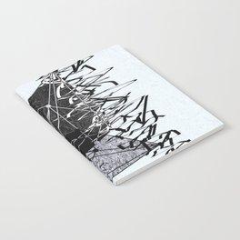 15_oasqqx Notebook