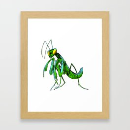 Mantodea Framed Art Print