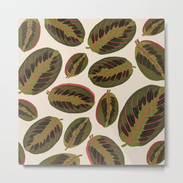 Maranta leaves Metal Print