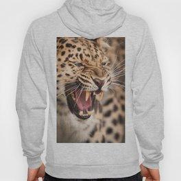 Amur Leopard Hoody