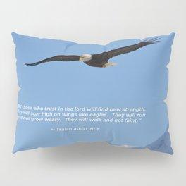 Soaring High!  -  Mature Pillow Sham