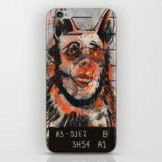 Waldick Dogman iPhone & iPod Skin