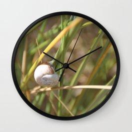 Petit escargot... Wall Clock