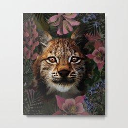 Beautiful Lynx Portrait Metal Print