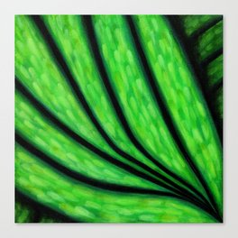 Botanicals & Beauty - Leaf Canvas Print