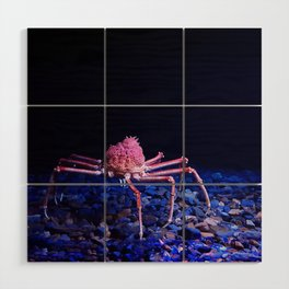 Giant crab Wood Wall Art