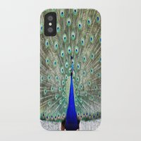 peacock iPhone & iPod Cases featuring Peacock by Whimsy Romance & Fun
