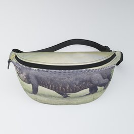 Large American Alligator walking in the wetlands Fanny Pack