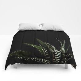 Haworthia Succulent plant cactus Comforters