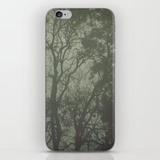 Misty Trees iPhone & iPod Skin