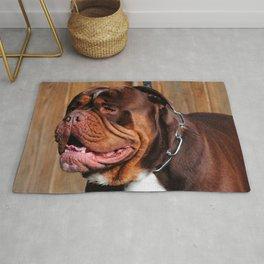 beautiful breed dog renascence bulldog Rug