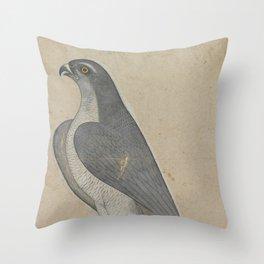 Falcon - 18th Century Classical Indian Art Throw Pillow