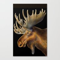 moose Canvas Prints featuring Moose by Tim Jeffs Art
