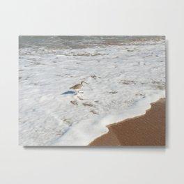 Bird in the Water Metal Print