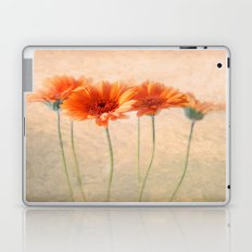 Orange Gerberas Laptop & iPad Skin
