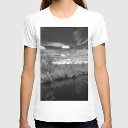 Cypress Cemetery T-shirt