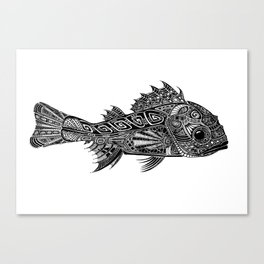 A Surly Rockfish - Atlantic Thornyhead-Longspine Canvas Print