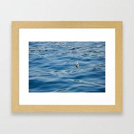 Bosphorus Framed Art Print