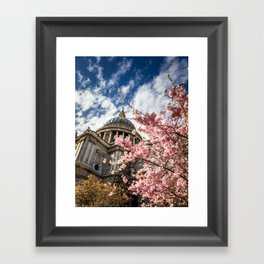 St Paul's & Cherry Blossom Framed Art Print