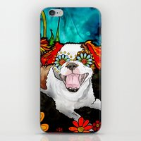 shih tzu iPhone & iPod Skins featuring Shih Tzu by RobiniArt