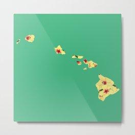 Hawaii in Flowers Metal Print