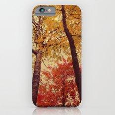 Autumn Couple iPhone 6s Slim Case